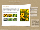 flashmo 011 Free Flash Website Templates and Galleries