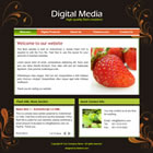 flashmo 131 digital Free Flash Website Templates and Galleries