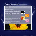 152 flower - free flash template
