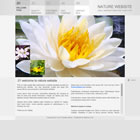 171 nature - free flash template