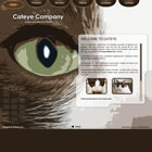 174 cateye - free flash template