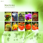 220 nature - free flash template