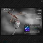 269 dragonfly