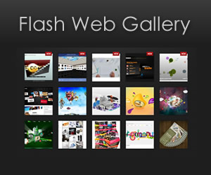 Flash Web Gallery