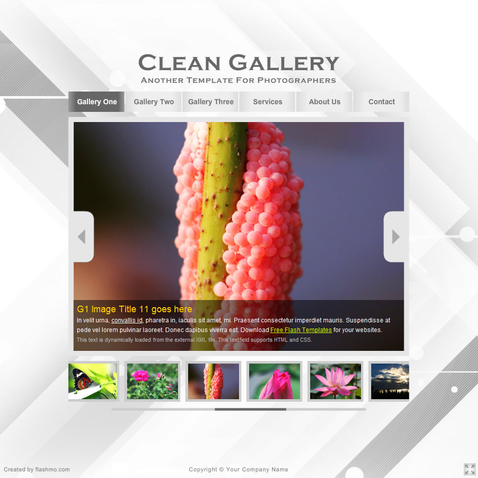 flashmo 248 clean gallery
