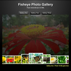 195 fisheye gallery