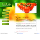 204 fruit - free flash template